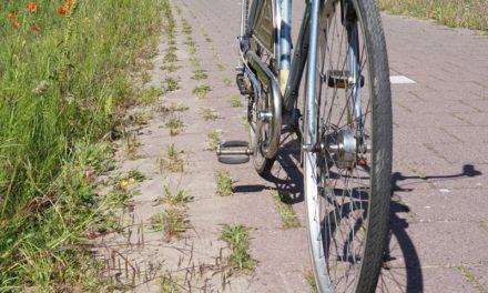 Veel reacties op bbA onderzoek fietspaden